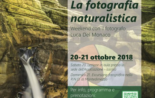 WORKSHOP FOTOGRAFIA NATURALISTICA - 20/21 OTTOBRE 2018